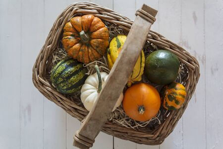 Top view of basket with different kind of pumpkins Фото со стока