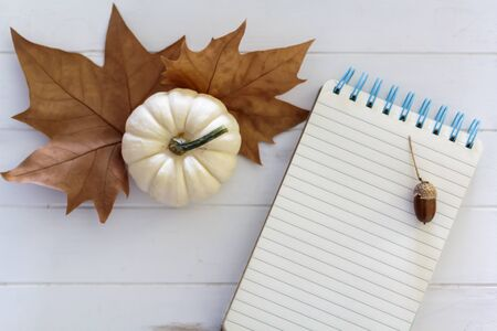 Top view of white pumpkin, dry leaves and notebook with acorn