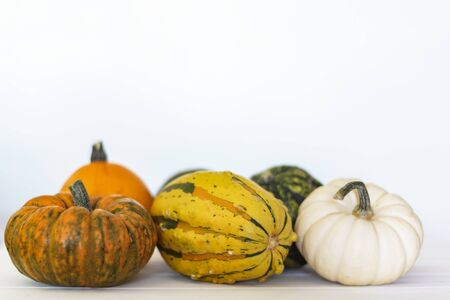 Assortment of pumpkins on white background with copy space Фото со стока