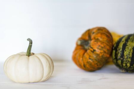 White pumpkin on white wooden table with assortment of pumpkins on the background