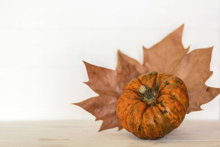 Orange pumpkin and autumnal leaves on white background with copy space Фото со стока