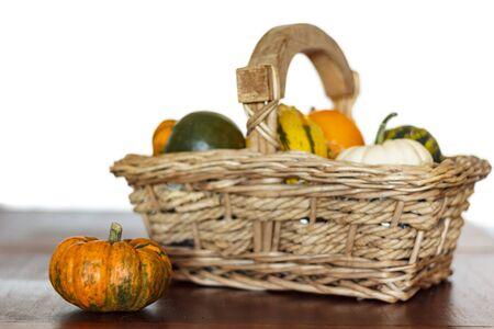 Harvest of assorted pumpkins in basket