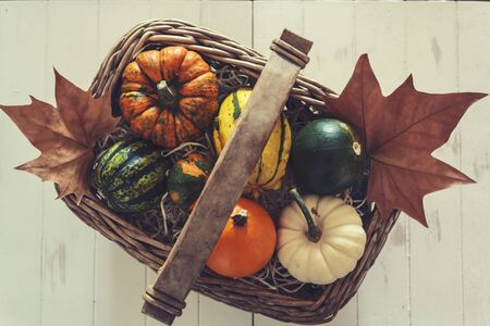 Top view of colorful pumpkins in basket on white wooden table. Vintage filter