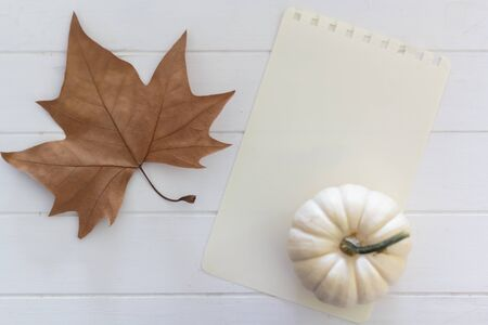 Top view of autumn composition with dry leaf, white pumpkin and blank page with copy space