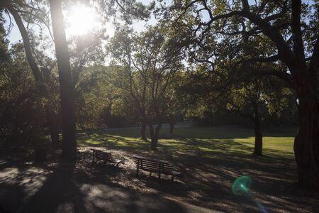 Leerer Park an einem Herbsttag