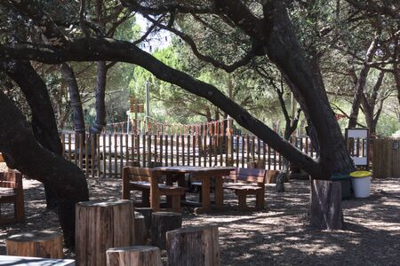 Outdoor space with tables and benches and trees surrounding