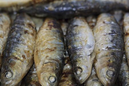 Grilled sardines. Typical portuguese cuisine Stock Photo