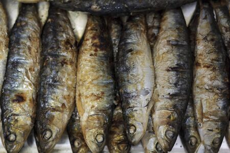 Top view of grilled sardines. Typical portuguese cuisine