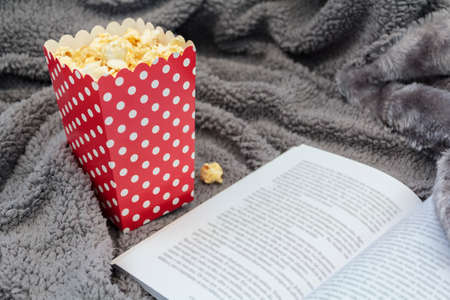 Popcorn box and open book on warm blanket