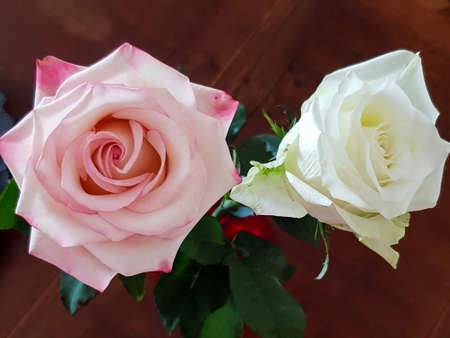 Top view of pink rose and white rose floers