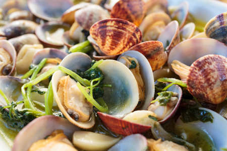 Close up of delicious cooked clams ready to eat