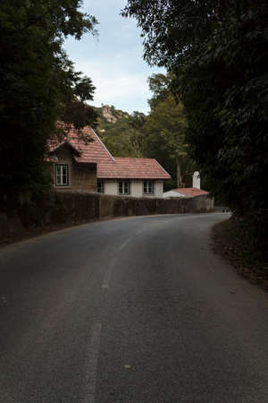 Empty road with cute house and trees on both side