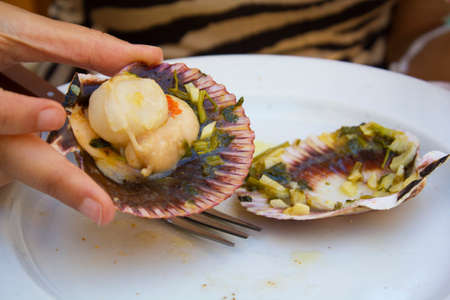 Woman eating fresh Variegated scallop