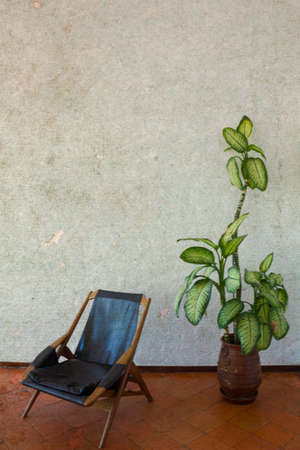 Vertical shot of chair and pot with plant. With aged effect
