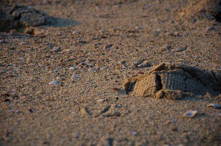 foot step: Passo del piede nella sabbia Archivio Fotografico