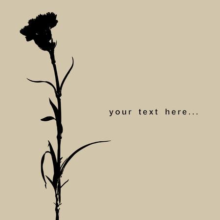 flower.Carnation Vector