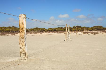 australian outback: Barbed Fence Wooden Poles along dry salt lake area Australian Outback