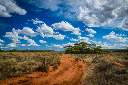 australian outback: Curvy red soil dirt road Australian outback rural wilderness scene Stock Photo