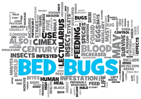 Bed Bugs Concept Design Word Cloud on White Background Stock Photo - 17466271