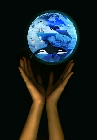 Save the earth - marine life photo