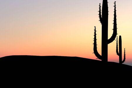 Desert achtergrond bij zonsondergang cactus met silhouetten