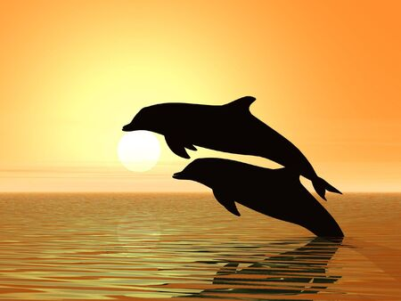 reflection of life: Couple of dolphins swimming in sunset background - 3d render illustration