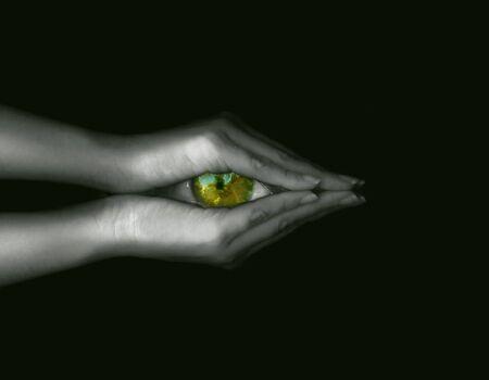 visionary: Visionary eye