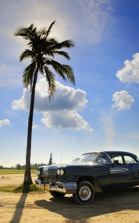 A view of vintage classic car and coconut palm under tropical sky