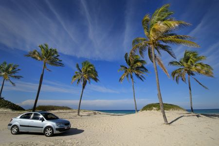 Tropical cuban beach with coconut palm trees and modern car