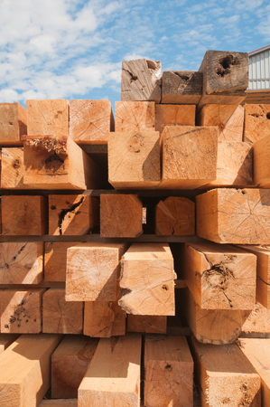 lumbering: Detail of wood blocks stacked at lumber mill in Ontario, Canada