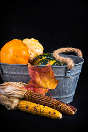 vegetable tin: Abstract autumn harvest background with pumpkins and fall leaves over black background