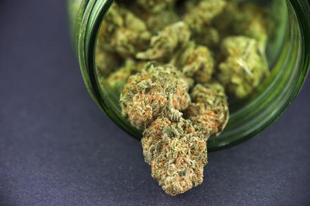 녹색 유리 항아리 - 의료 마리화나 개념에 대마초 봉오리 (크림슨 변형)의 세부 사항