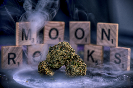 Cannabis flower buds coated in sherry oil and marijuana dust aka moon rocks with smoke and blocks in the background