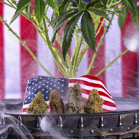 Cannabis buds, plant and american flag with some smoke - veteran theme medical marijuana concept