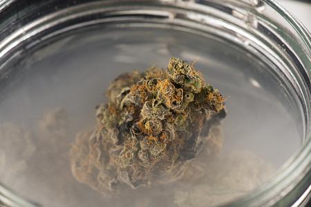 Macro detail of cannabis buds (maui skunk strain) on a glass jar with smoke - medical marijuana concept Stock Photo