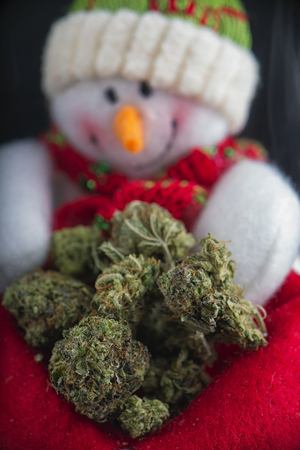 Detail of snowman with green cannabis nugs - marijuana christmas background