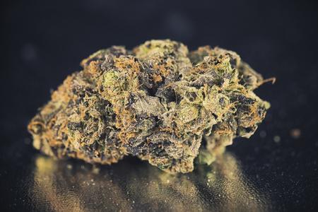 Macro detail of single nug over dark reflective background - Medical marijuana concept