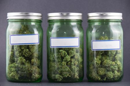 Assorted cannabis bud strains and glass jars over grey background - medical marijuana dispensary concept Stok Fotoğraf