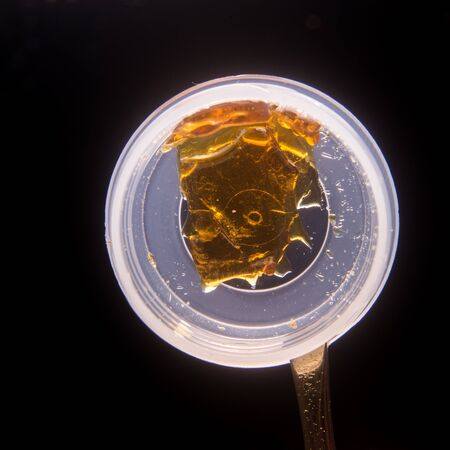 cannabinoid: Piece of cannabis oil concentrate aka shatter used by medical marijuana patients isolated on a container