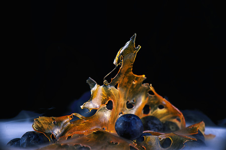 Close up detail of marijuana oil concentrate aka shatter on a plate with with blueberries - isolated over black background Stock Photo