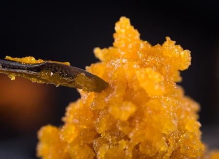 Macro détail de concentré de cannabis résine vivante (extrait de marijuana médicale) avec un outil de tamponnage