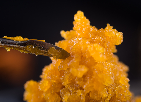 Macro detail of cannabis concentrate live resin (extracted from medical marijuana) with a dabbing tool