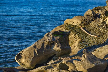 Detail of rock formation and the ocean seen from Jack Point and Biggs Park in Nanaimo, British Columbia.