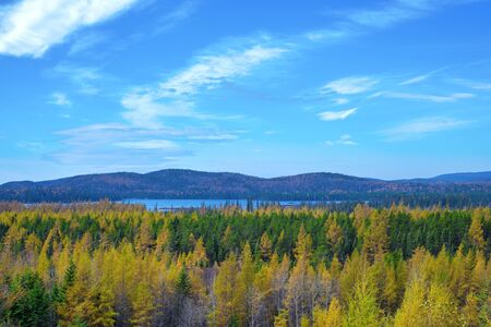 View of birch and pine trees overlooking Northern Ontario lake from the town of Wawa during the fall