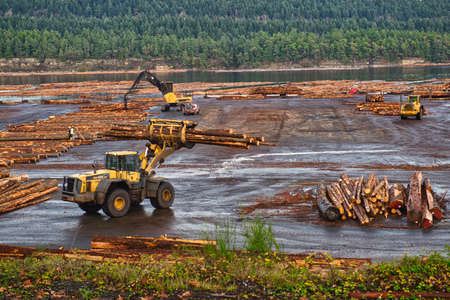 View of timber and logging industry in Ladysmith, Vancouver Island, British Columbia Archivio Fotografico