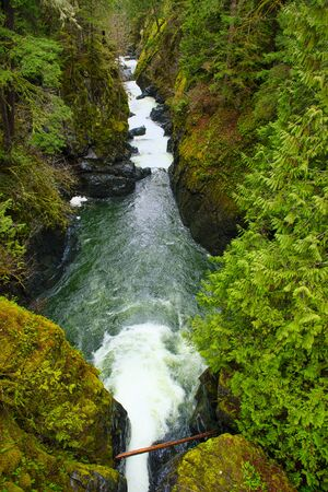 View of the Englishman River Falls lower waterfalls section located in Vancouver Island, BC Canada