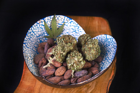 Dried cannabis nugs with cacao beans on a tray - infused marijuana edibles concept