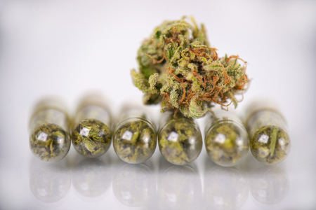 Medical marijuana concept with dry cannabis bud and pills isolated on white reflective surface Stok Fotoğraf