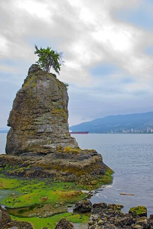 View of the Siwash Rock taken at Stanley Park seawall trail in Vancouver, BC
