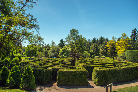 ボタニック ガーデンの中の日当たりの良い夏の日の迷路庭園の眺め 写真素材